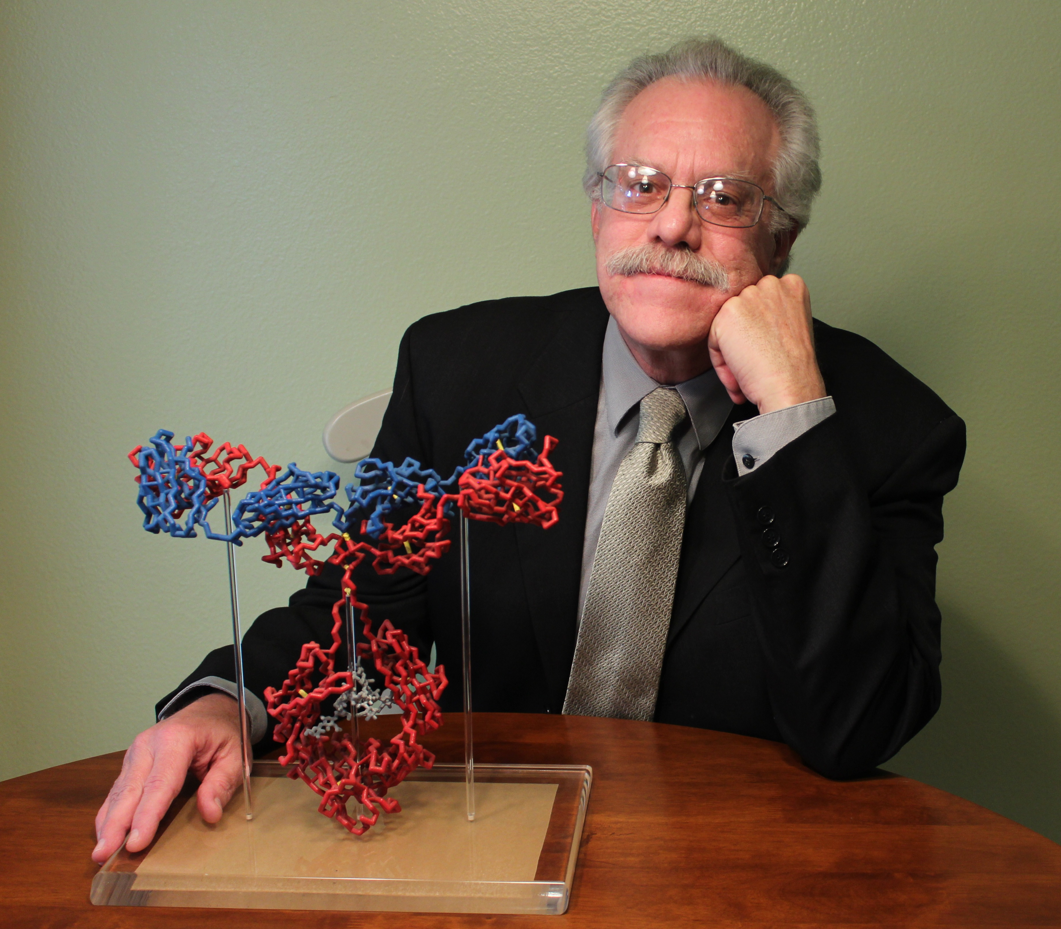 glassy-antibody